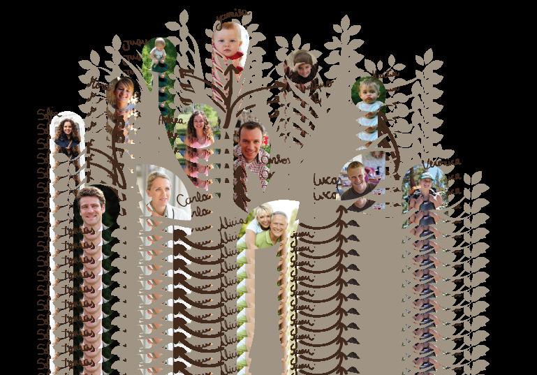 arbol genealógico para analizar cáncer hereditario