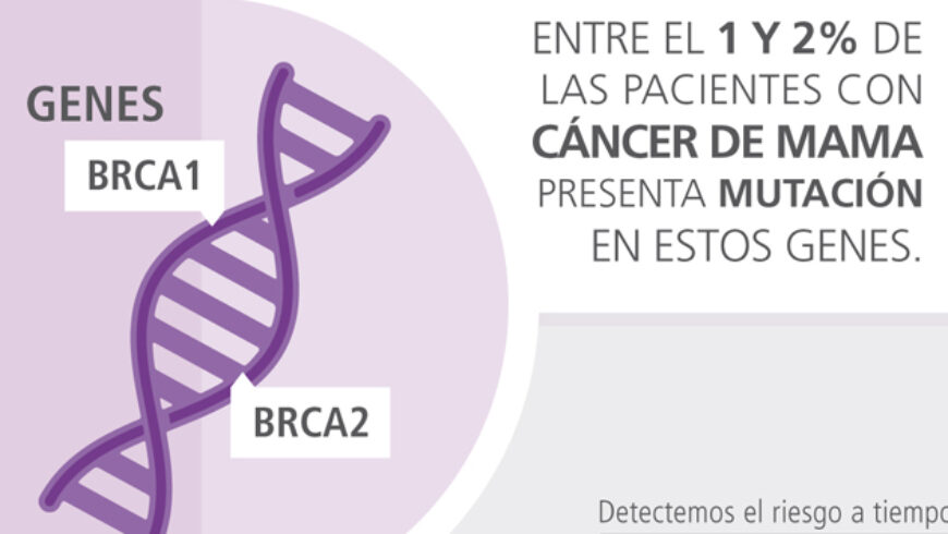 Mutaciones en los genes BRCA 1 y 2
