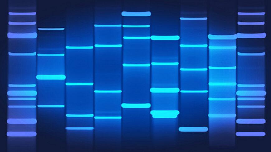 Retrato genético personalizado en el congreso de IISSS